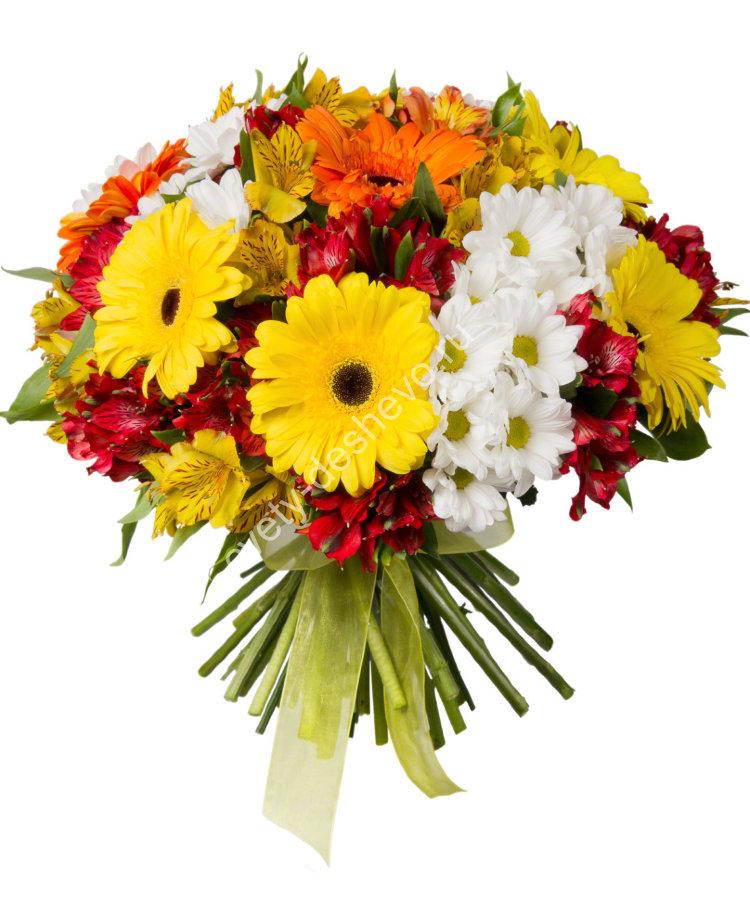 Напольный цветок в офис